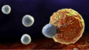 How Chemotherapy cause yeast infection.